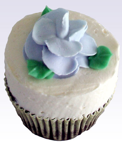 Chocolate cupcakes, topped with a swirl chocolate buttercream and decorated with a  chocolate flower